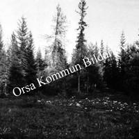 Okb_1842.jpg