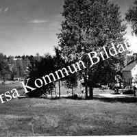 Okb_1490.jpg