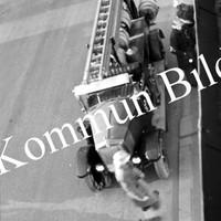 Okb_GS393.jpg