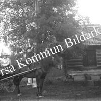 Okb_FAH11.jpg