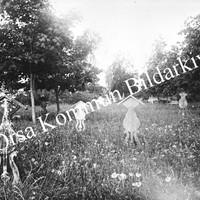 Okb_2786.jpg
