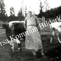 Okb_32959.jpg