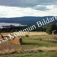Okb_BN570.jpg