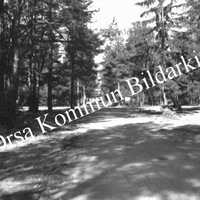 Okb_6299.jpg