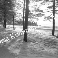 Okb_6593.jpg