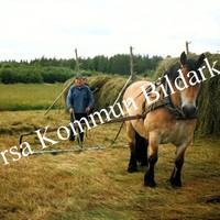 Okb_36520.jpg