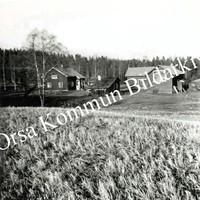 Okb_36694.jpg