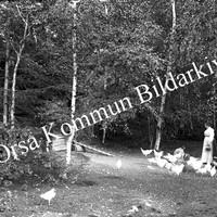 Okb_HA28.jpg