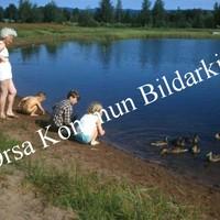 Okb_EBo74.jpg