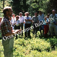 Okb_SEK32.jpg