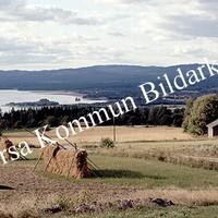 Okb_BN571.jpg