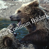 Okb_SEK180.jpg