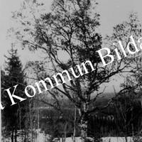 Okb_5358.jpg