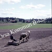 Okb_BN556.jpg