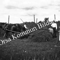 Okb_Esten125.jpg