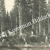 Okb_36302.jpg