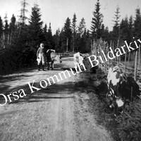 Okb_35302.jpg