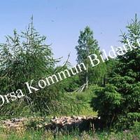Okb_SEK137.jpg