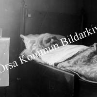 Okb_33516.jpg