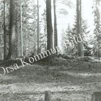 Okb_31588.jpg