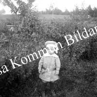 Okb_Åb31.jpg