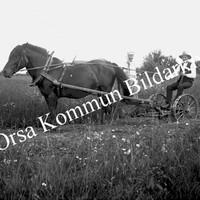 Okb_Esten60.jpg