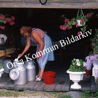 Okb_SEK98.jpg