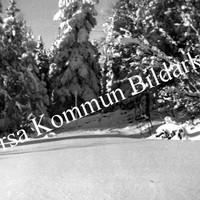 Okb_623.jpg