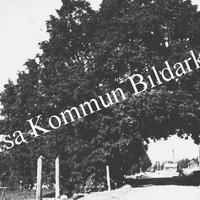Okb_4724.jpg