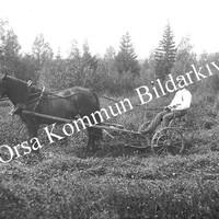 Okb_EE70.jpg