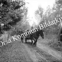 Okb_5012.jpg