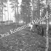Okb_7221.jpg