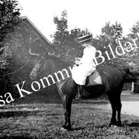Okb_Bonde2.jpg