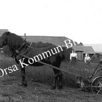 Okb_OS186.jpg