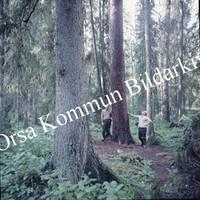 Okb_BN150.jpg