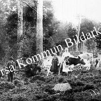 Okb_36157.jpg