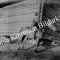 Okb_AB6.jpg