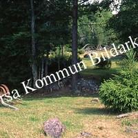 Okb_SEK154.jpg