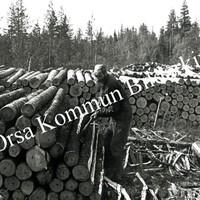 Okb_YH20.jpg