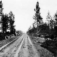 Okb_1855.jpg
