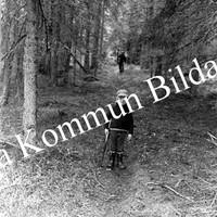 Okb_30346.jpg