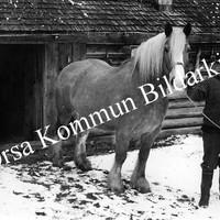 Okb_25909.jpg