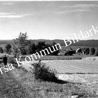 Okb_1487.jpg