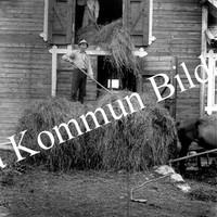 Okb_Åb41.jpg